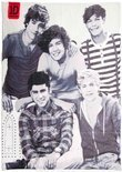 One Direction - Plaid - 120x150 cm - Polyester - 120 x 150 cm - Wit