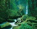 Fotobehang Flusslauf
