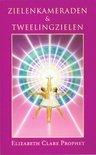 Gidsen voor praktische spiritualiteit - Zielenkameraden en tweeling zielen