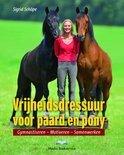 Vrijheidsdressuur voor paard en Pony