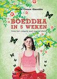 Boeddha in 5 weken