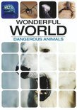 Wonderful World - Dangerous Animals