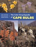 The Color Encyclopedia Of Cape Bulbs