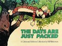 Calvin and Hobbes (08): Days Are Just Packed