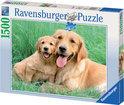 Ravensburger Puzzel - Retriever Familie