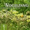 Nederlandse New Age muziek - Tot € 400