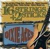 16 Strings & 2 Sticks
