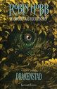 De kronieken van de Wilde Regenlanden - 3 - Drakenstad