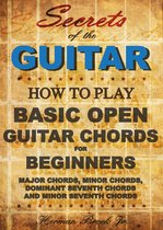 Guitar Chords: Learn how to play Basic Open Guitar Chords for Beginners - Secrets of the Guitar