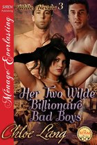 Her Two Wilde Billionaire Bad Boys