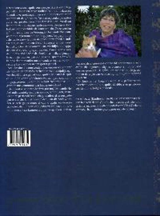 An Moonen Quilts.Bol Com Geschiedenis Van De Nederlandse Quilt 9789075879414 An