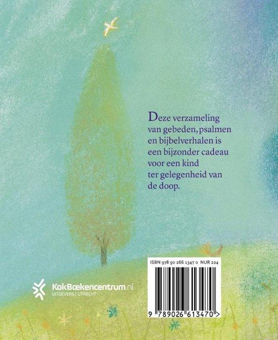 Bolcom Mijn Doopboek S Piper 9789026613470 Boeken
