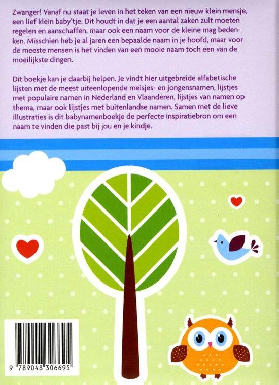 Bolcom Babynamen Boekje Diverse Auteurs 9789048306695 Boeken