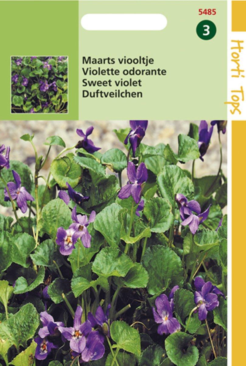 Hortitops Zaden - Viola Odorata (Maarts Viooltje)