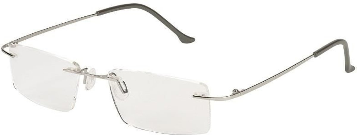 Moses Libri_x Leesbril Modern Zilver Sterkte +1,50 kopen
