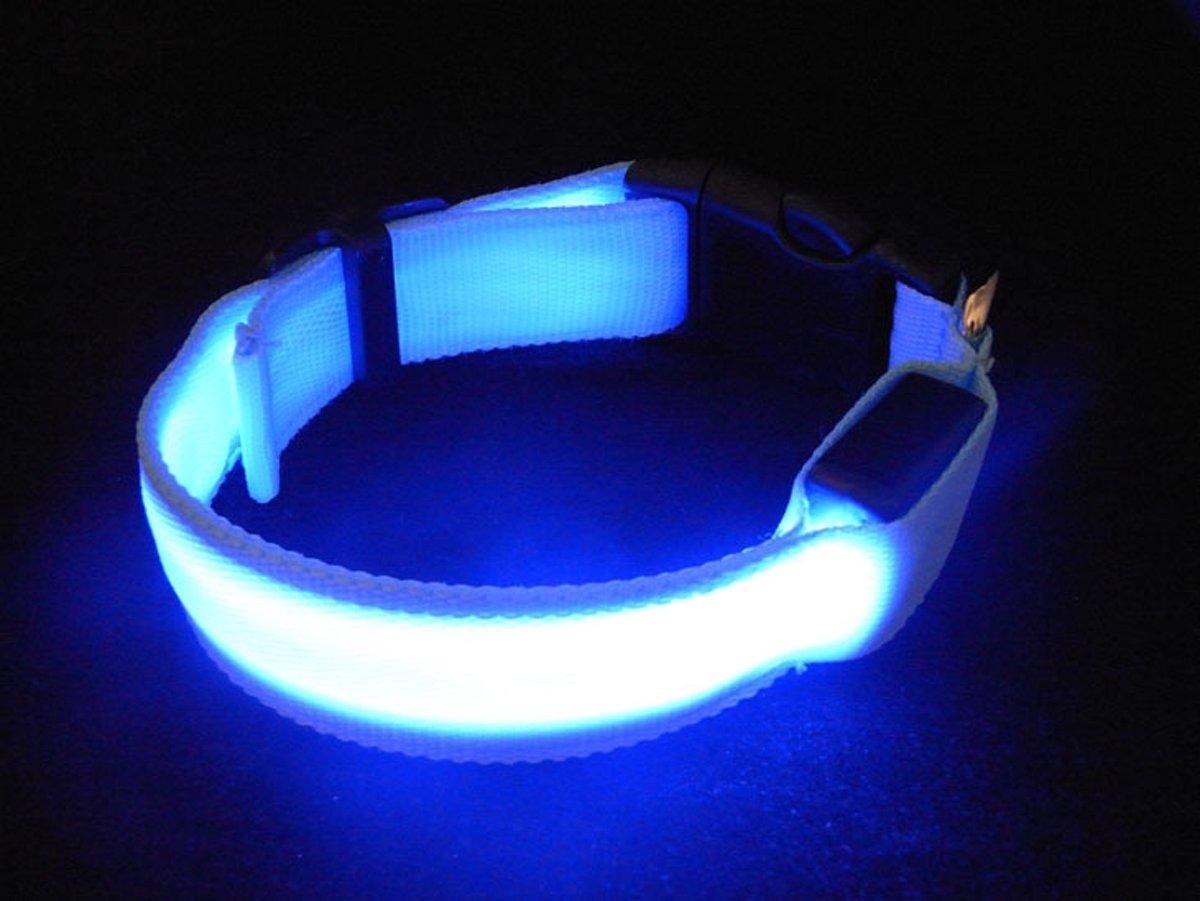 bolcom nylon honden halsband met led verlichting xl large blauw licht