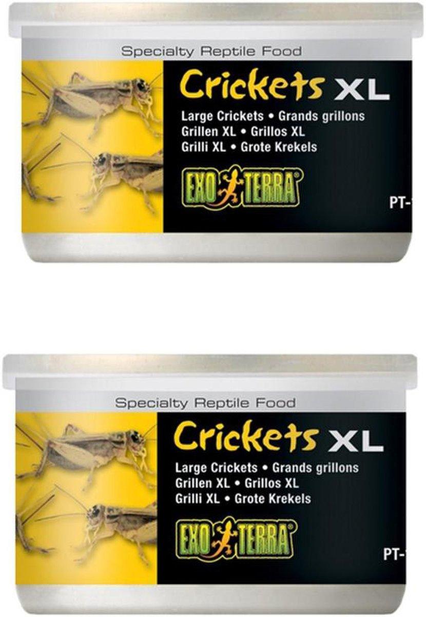 Exo Terra Grote krekels XL 34 gr per 2 verpakkingen