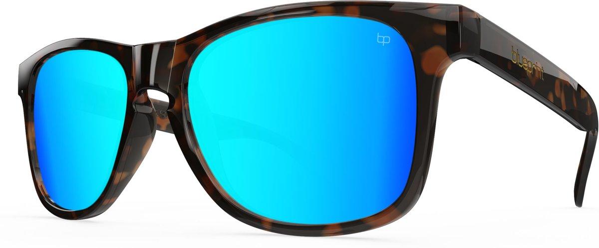 Blueprint Eyewear Noosa X // Tropical Havana kopen