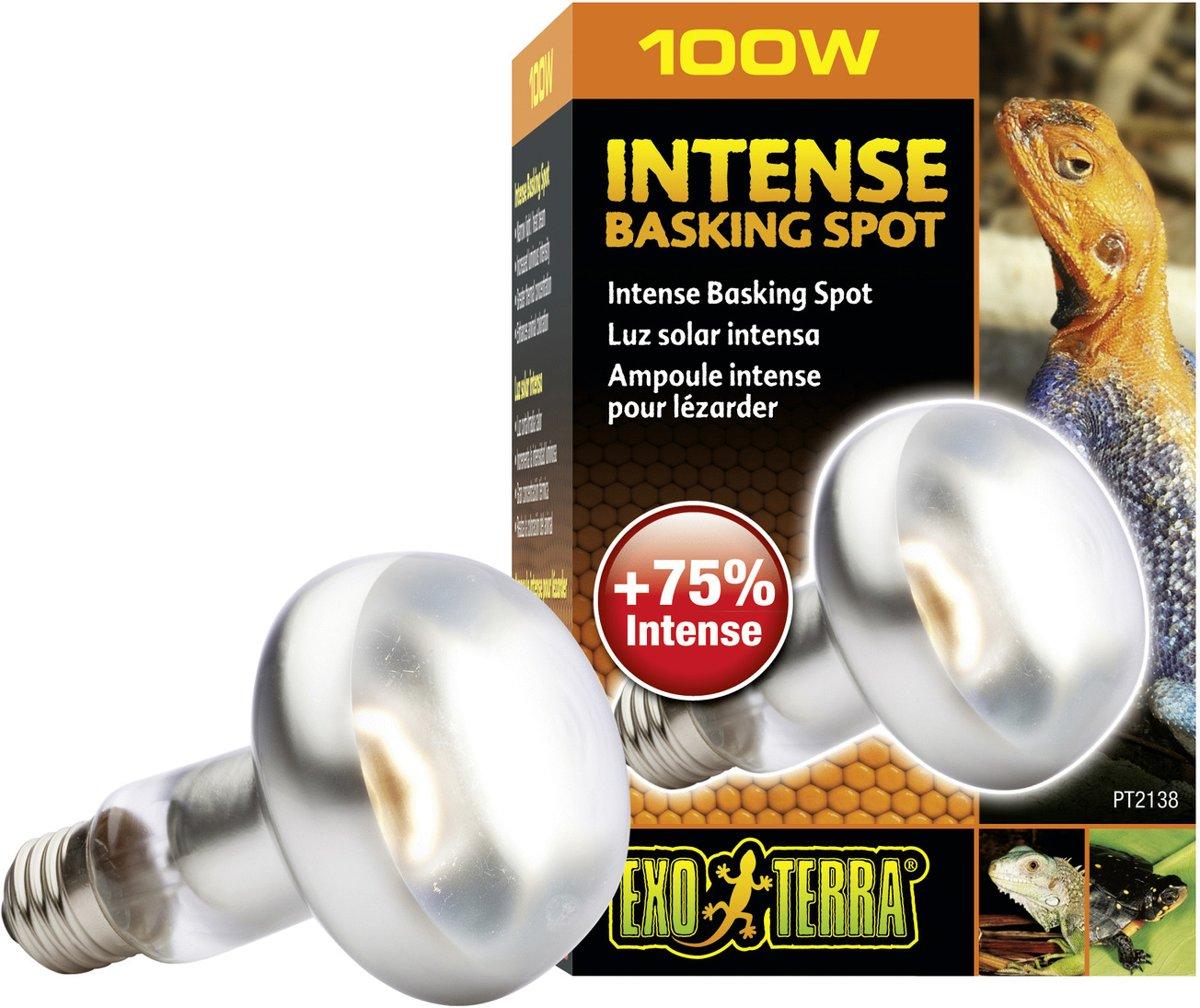 Exo Terra Basking Spot Lamp - 100W