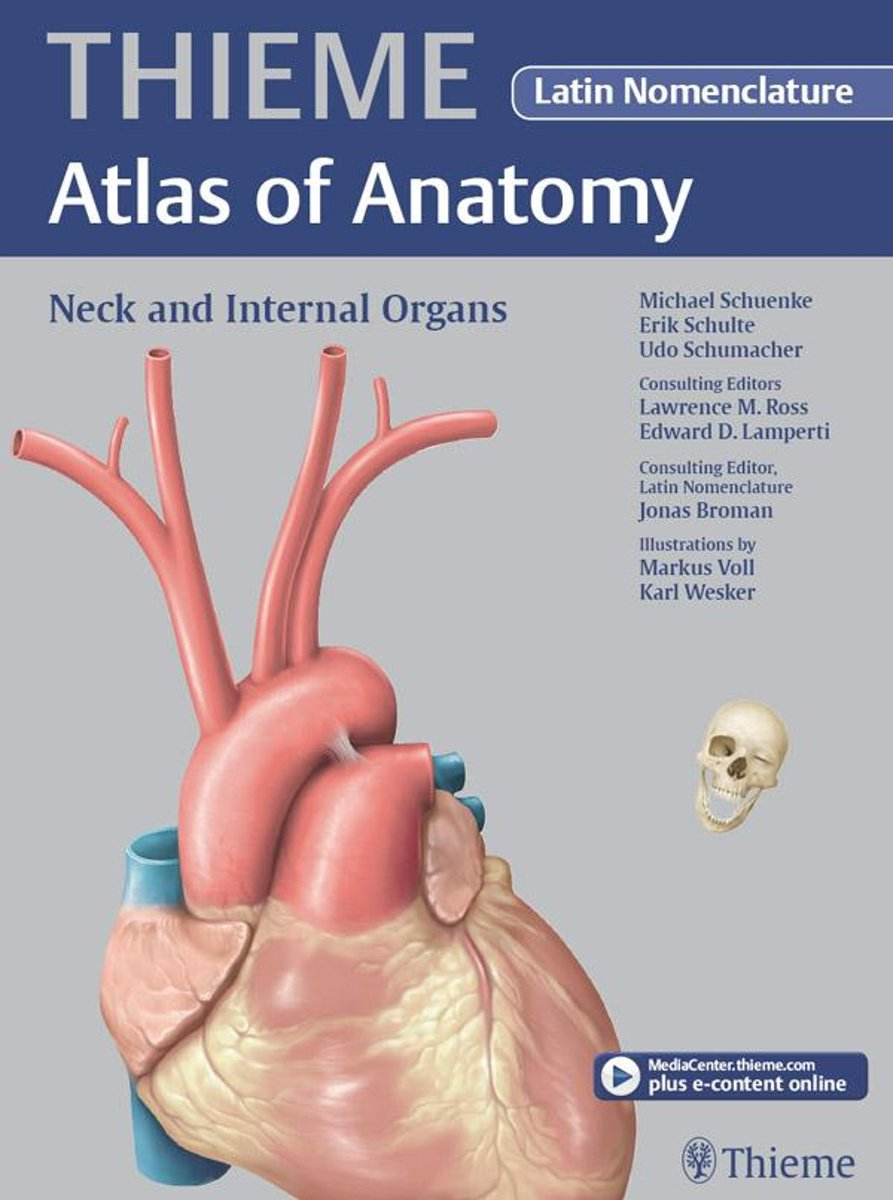 bol.com   Neck and Internal Organs - Latin Nomencl. (THIEME Atlas of ...