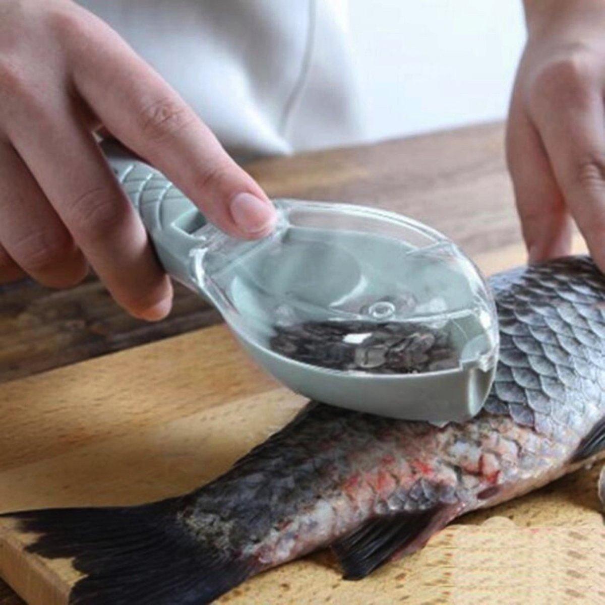 Vis schubben schraper met handig opvangbakje in een leuke visvorm! kopen