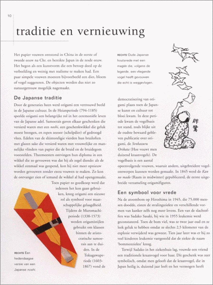 Bolcom Origami Rick Beech 9789059201477 Boeken