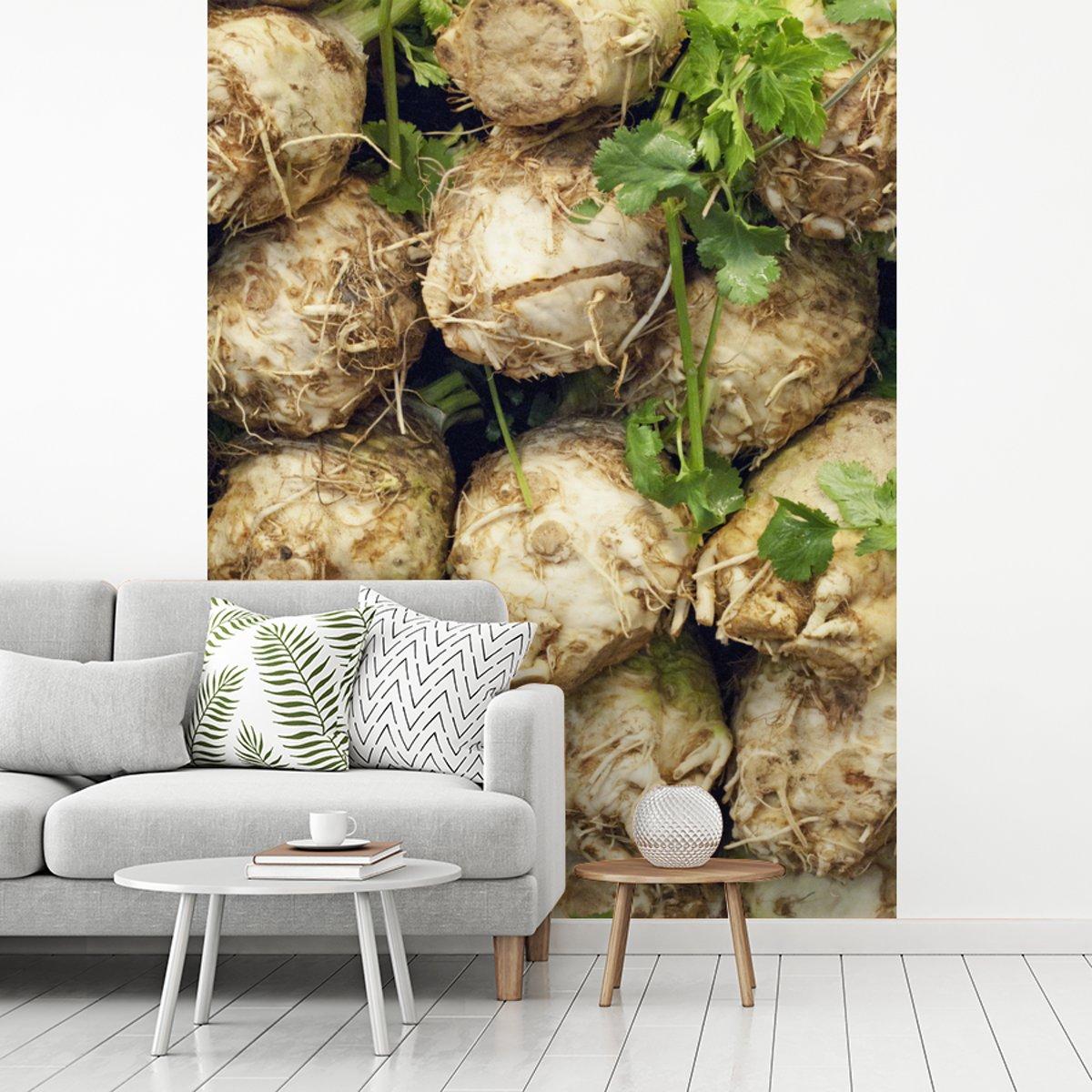 Fotobehang vinyl - Rijen van knolselderij breedte 205 cm x hoogte 280 cm - Foto print op behang (in 7 formaten beschikbaar)