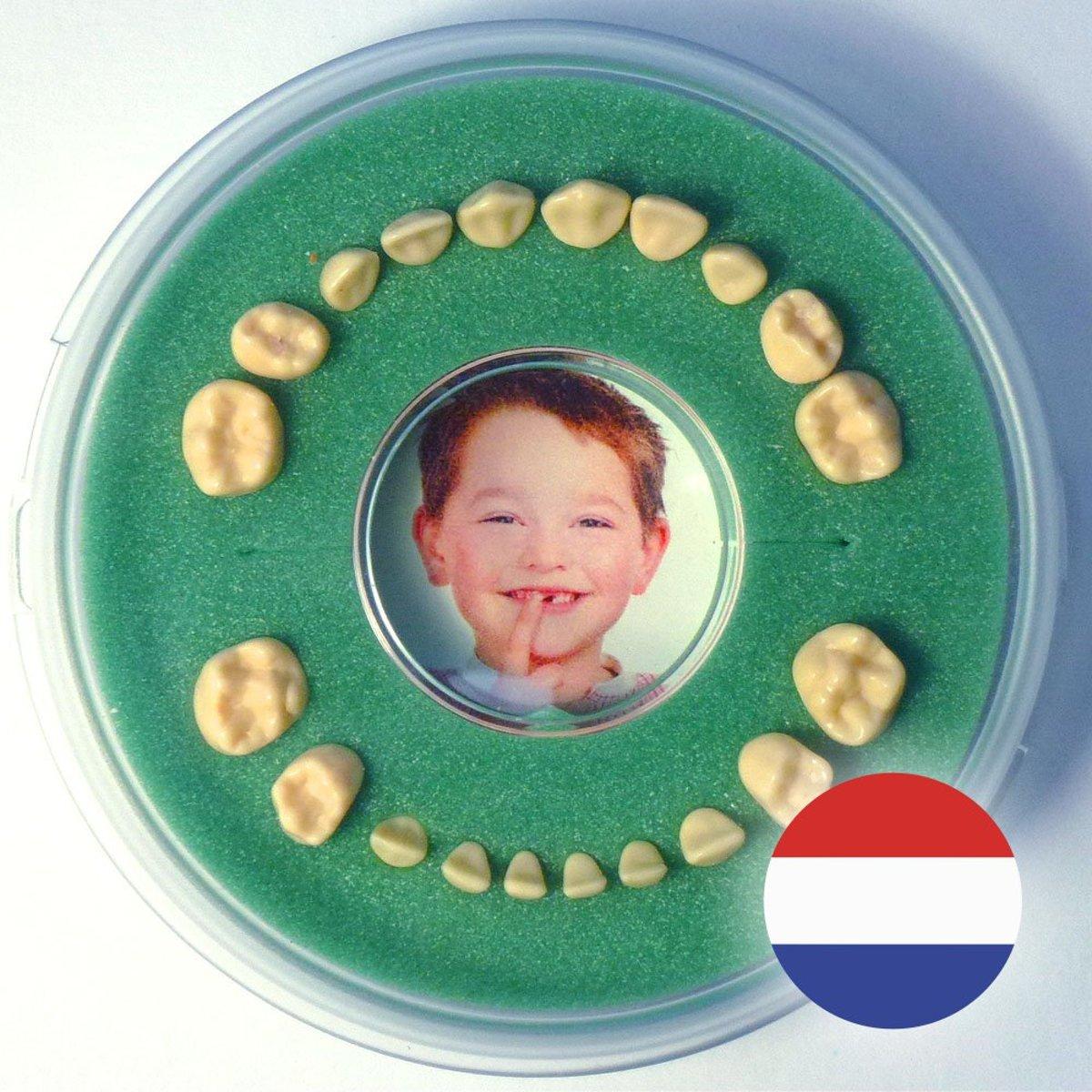 Tanden-Haarlokdoosje Kraamcadeau - Groen, Jongen, Meisje - Firsty - NL Tekst - Gratis Verzending