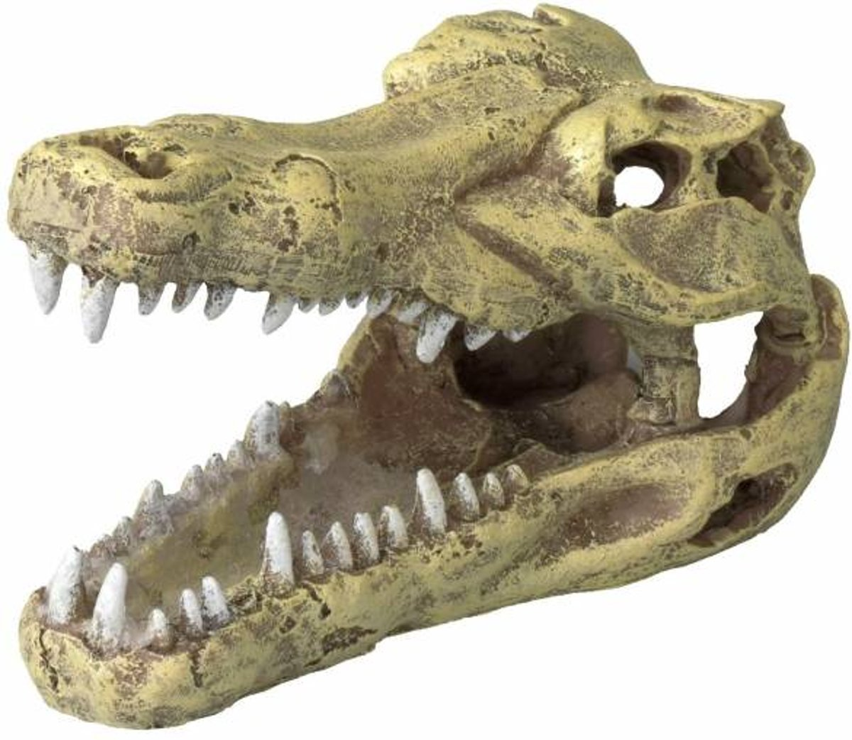 Aqua Della Aquarium decoratie Krokodillen schedel - Beige - 32,5 x 17 x 20,5 cm
