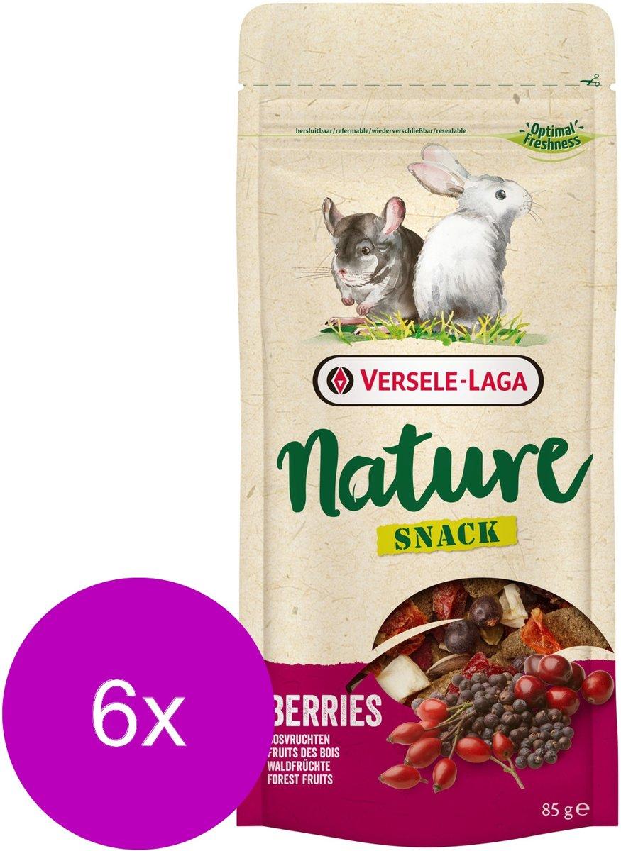 Versele-Laga Nature Snack Berries - Knaagdiersnack - 6 x Bessen 85 g