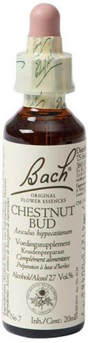 Foto van Bach Chestnut Bud Kastanjeknop - 20 ml - Voedingssupplement