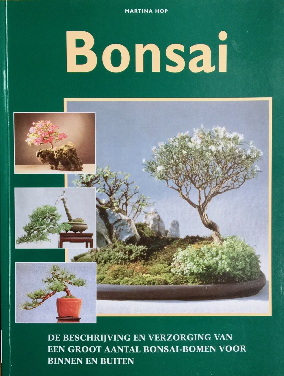 gallery of bonsai uac with binnen bonsai. Black Bedroom Furniture Sets. Home Design Ideas