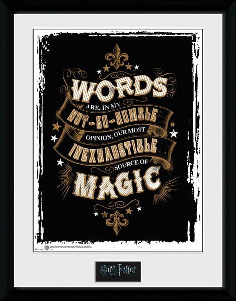 Harry Potter Words - Collector Print 30x40 kopen