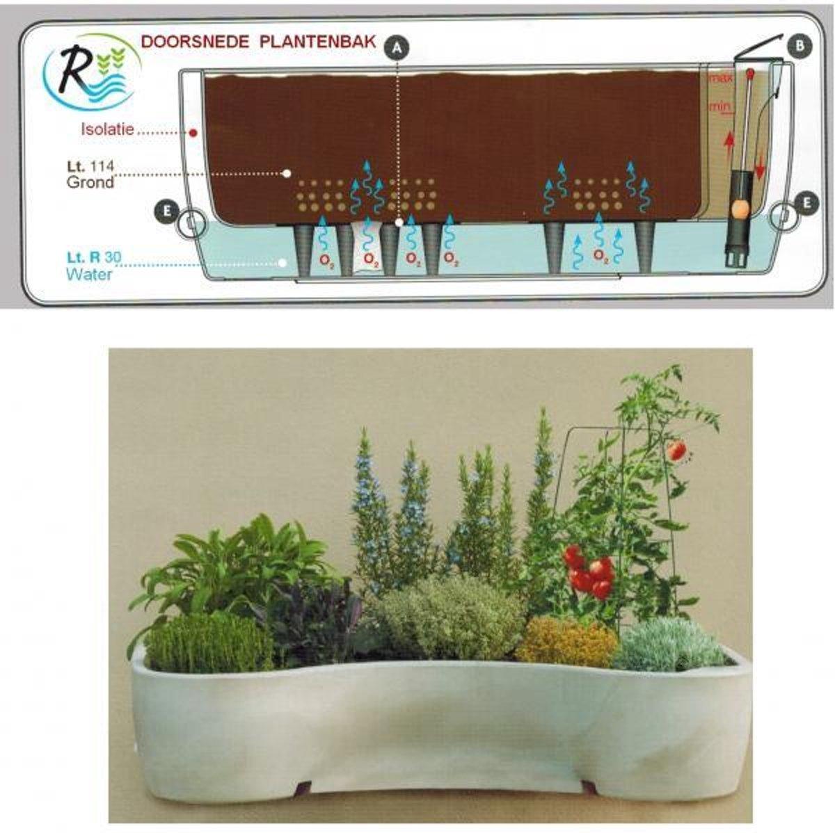 Plantenbak Met Waterreservoir.Bol Com Luxe Mobiele Plantenbak Met Waterreservoir