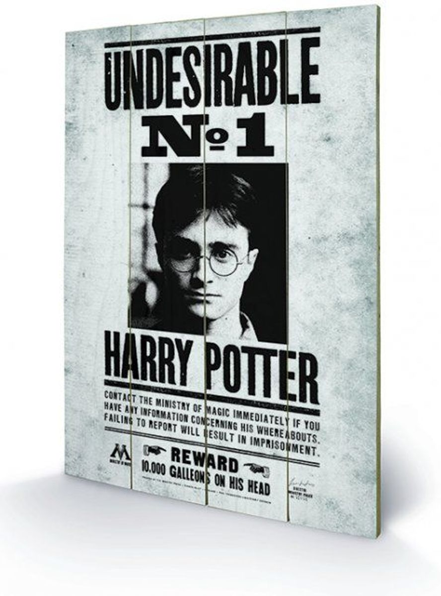 Harry Potter Undesirable No1 Wood Print kopen