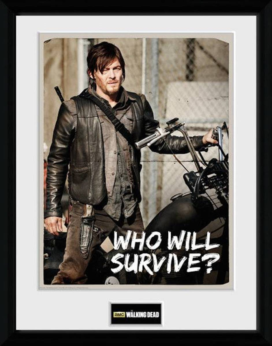 Merchandising THE WALKING DEAD - Collector Print 30X40 - Daryl kopen