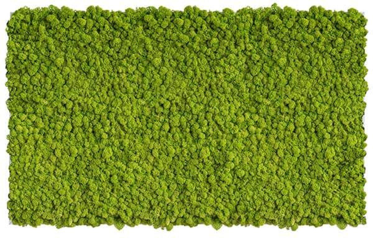 reindeer moss picture 100 x 60 CM voorjaar