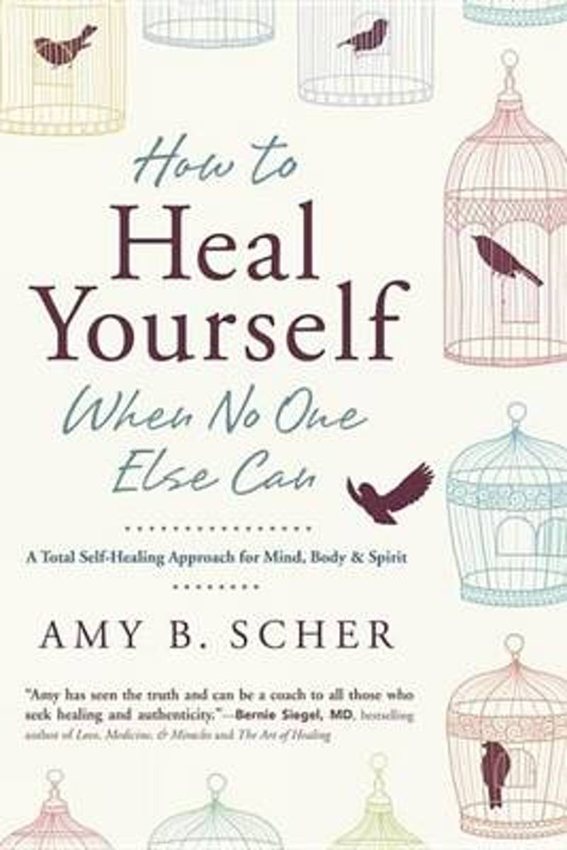 Bolcom How To Heal Yourself When No One Else Can Ebook Amy B