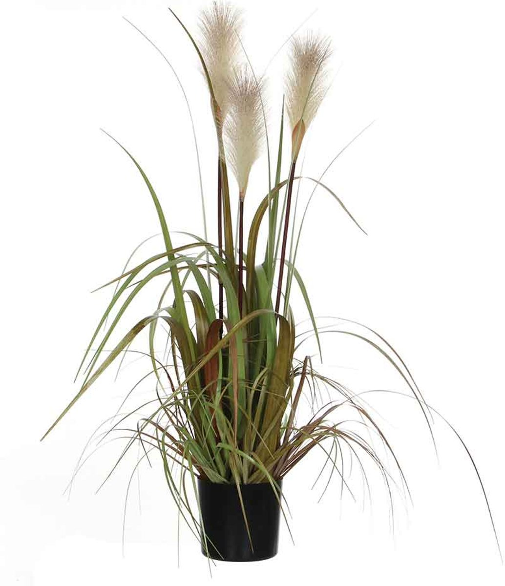 Mica Decorations pluimgras foxtail wit in pot maat in cm: 81 x 45