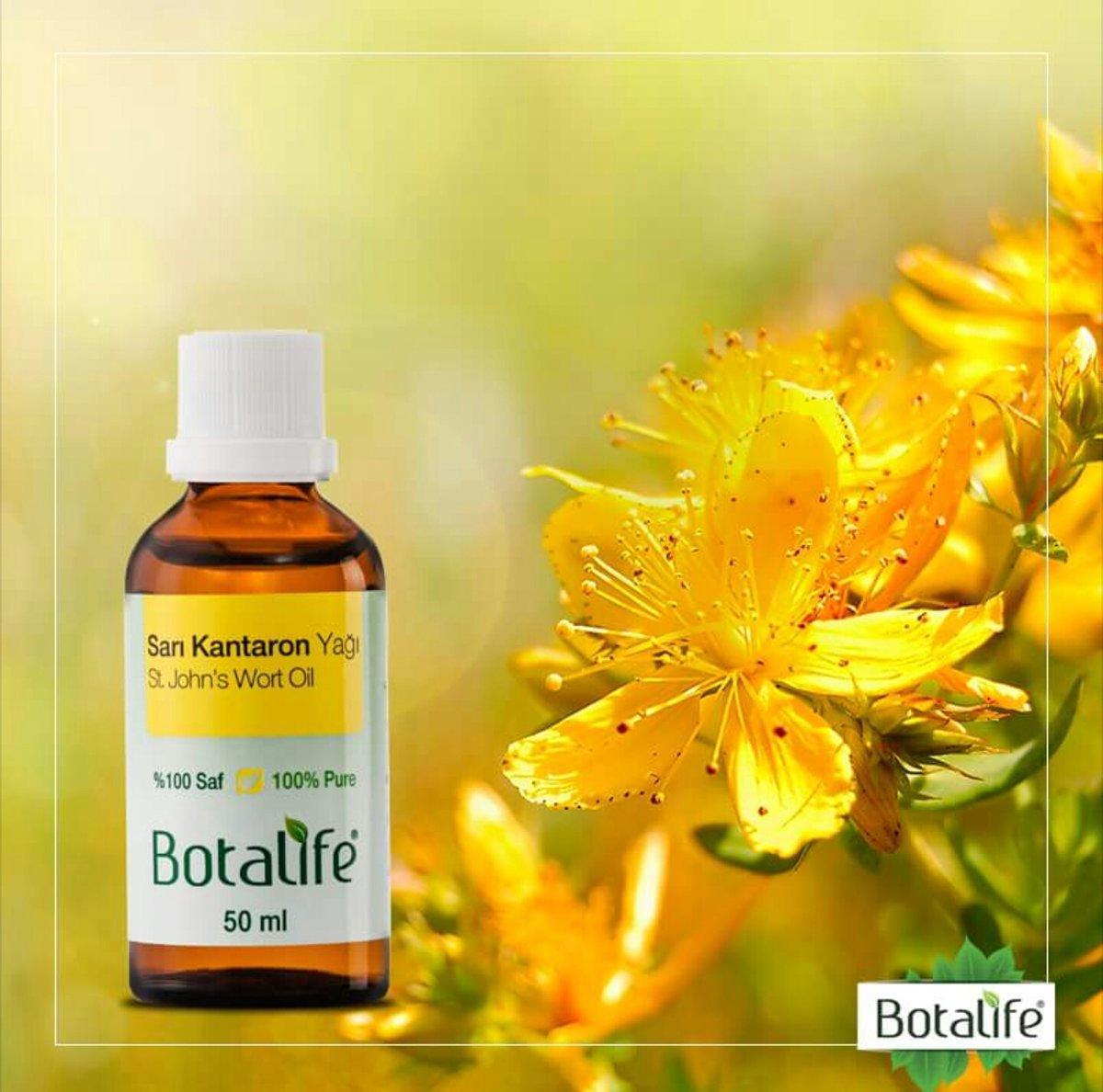Foto van Botalife - Sintjanskruid olie 50 ml - 100% natuurlijk