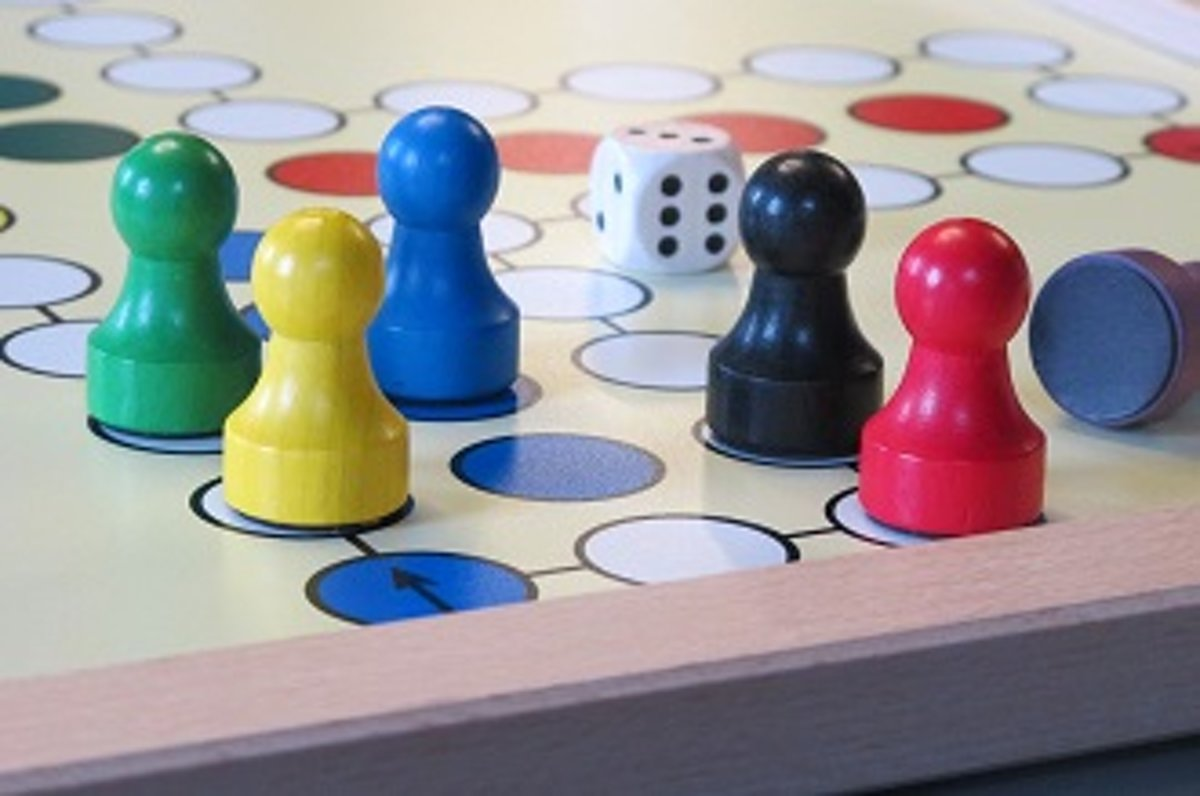 Mens erger je niet - magnetisch extra groot, voor 4 spelers (éénzijdig) - 50 x 50 cm