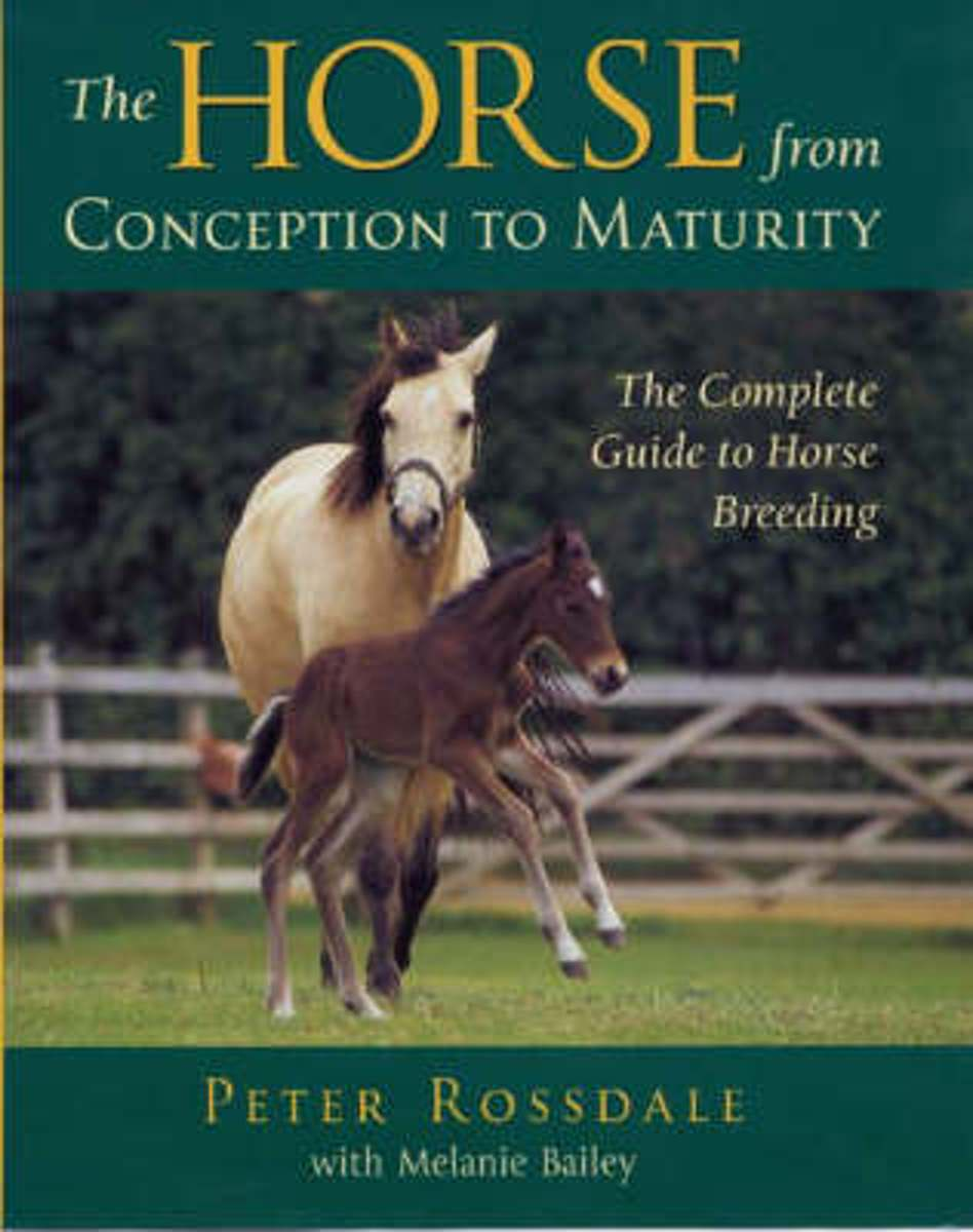 bol.com | The Horse from Conception to Maturity | 9780851318226 | Peter  Rossdale | Boeken
