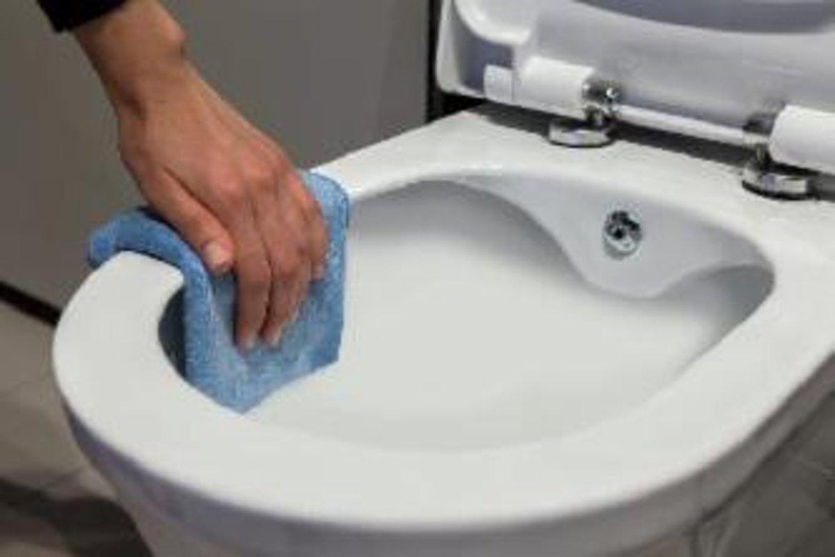 Toilet Met Sproeier : Douche toiletzitting active wash met afstandsbediening kopen bij