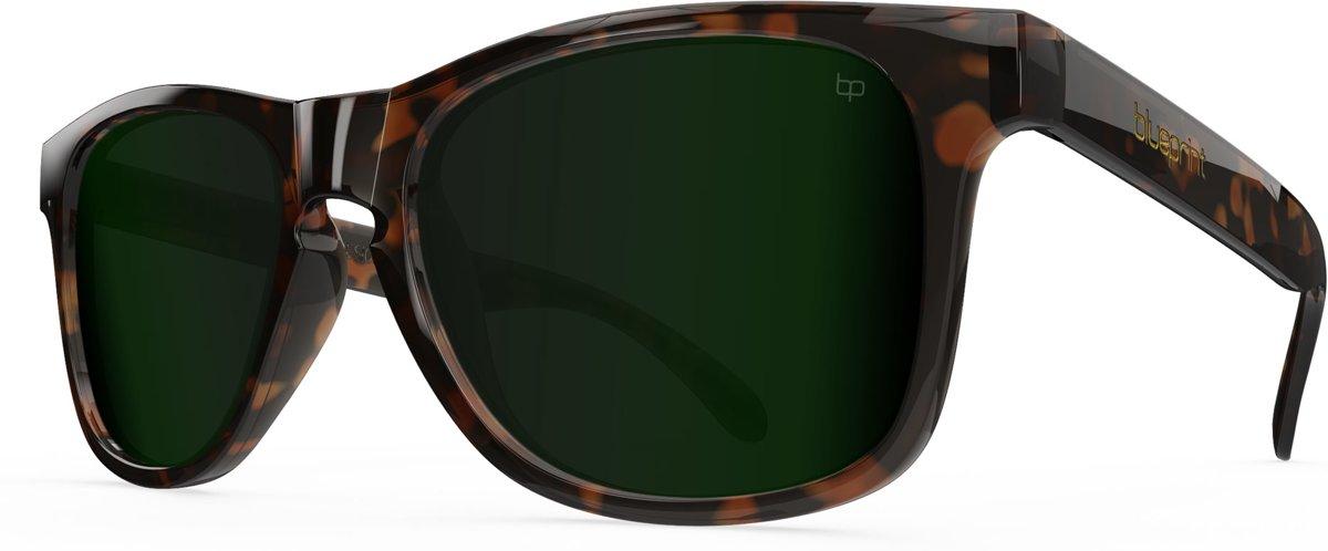 Blueprint Eyewear Noosa X // G-15 Havana kopen