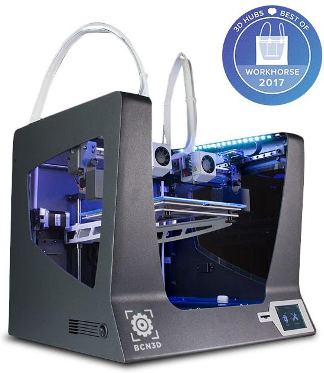BCN3D Sigma R17