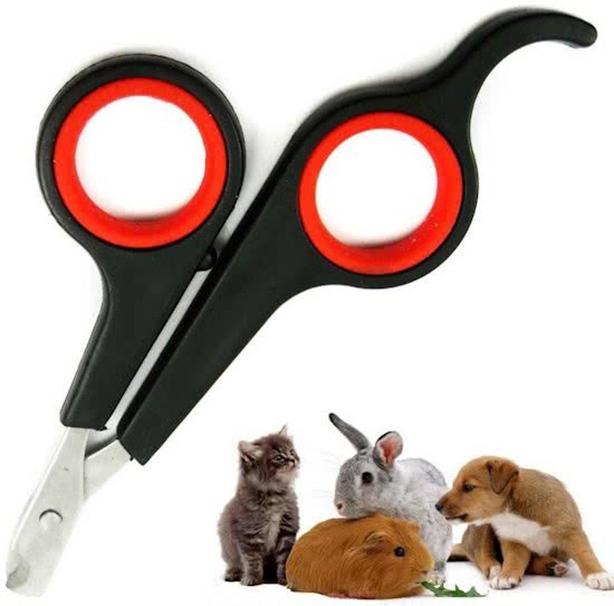 Dieren Nagelschaar - Nagelschaartje - Nagelknipper - Geschikt voor kleine huisdieren Hond Kat Konijn Cavia Vogel