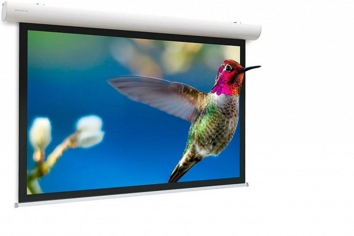 PROJECTA Elpro Concept Matte White HDTV 162x280 cm 10103517 kopen