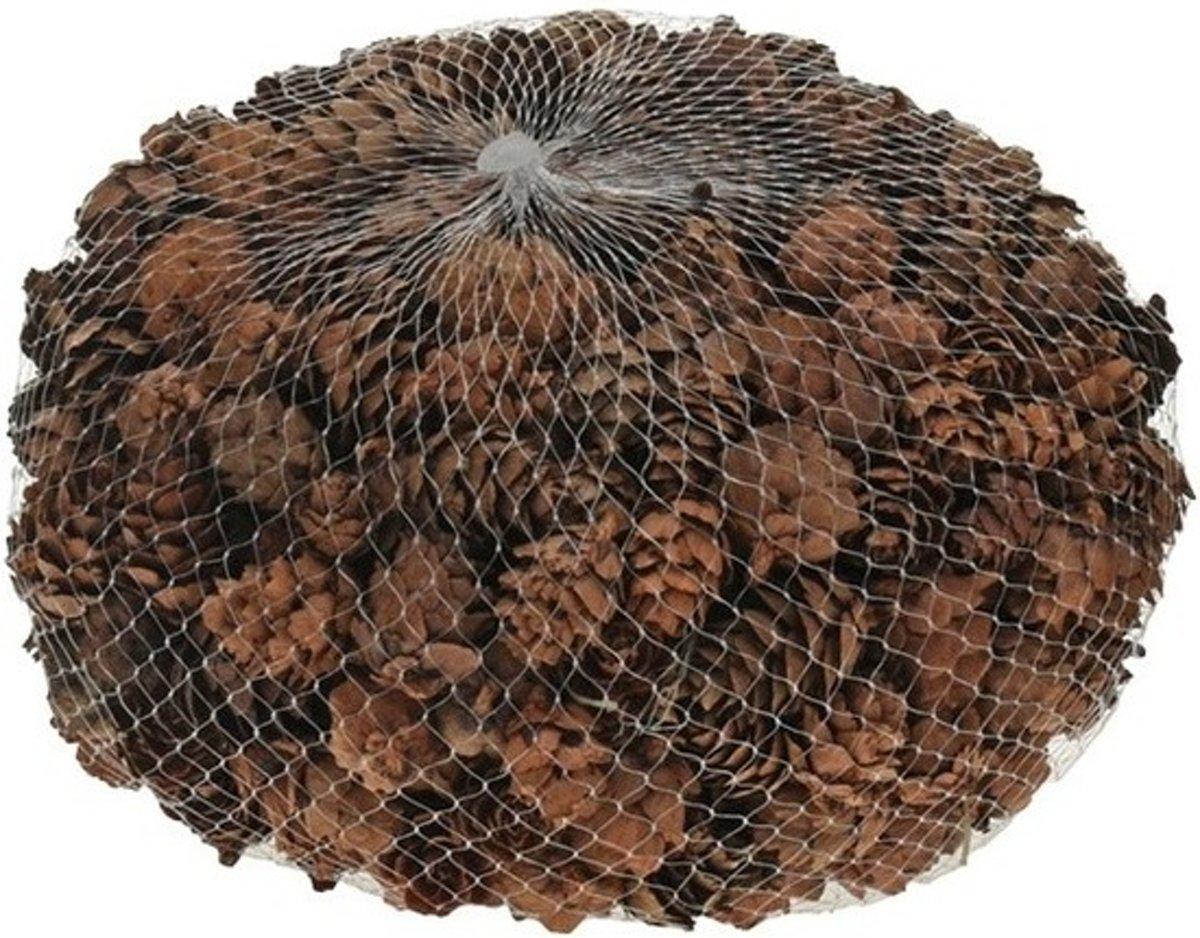 Decoratie dennenappels bruin 3 cm kopen