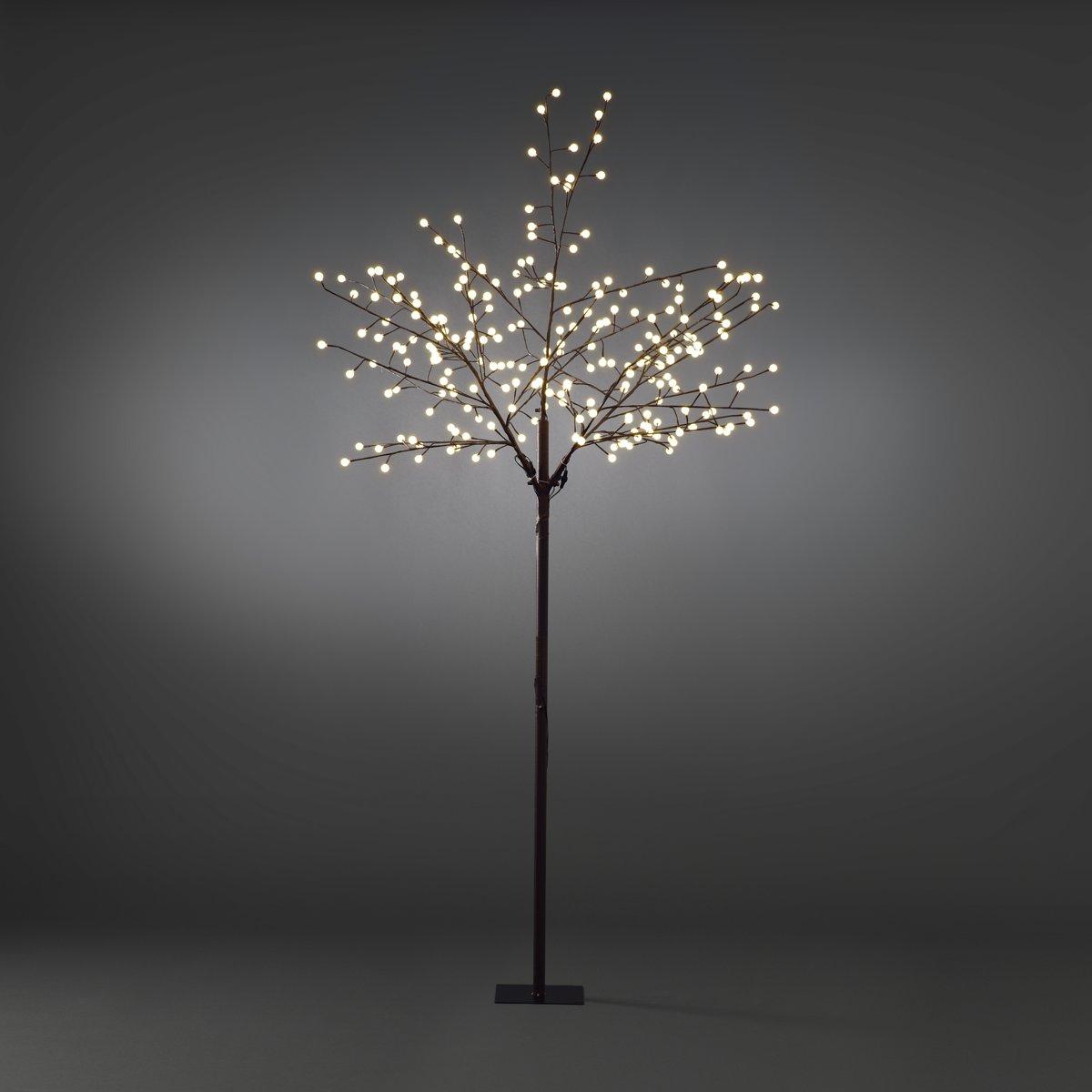 Konstsmide - LED boom bruin 250cm 24V 240x - warmwit kopen