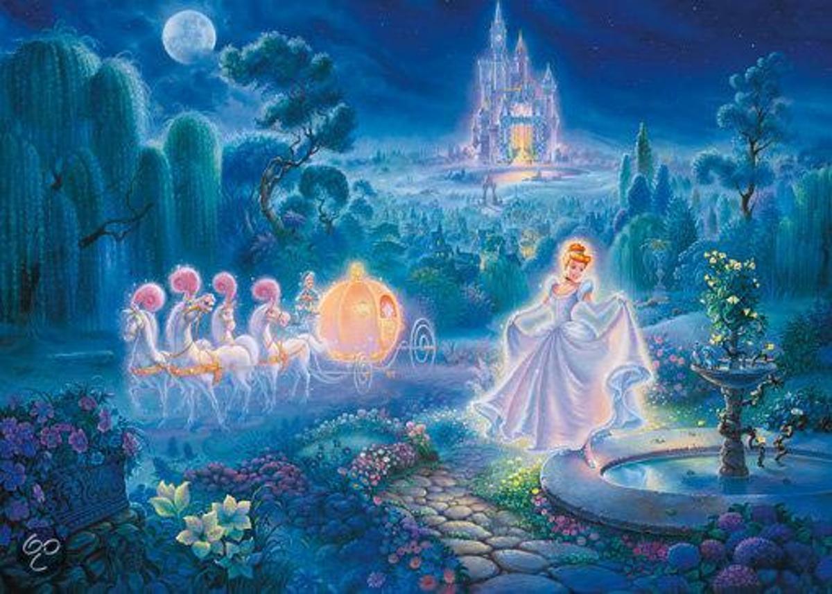 Tom duBois: Disney Assepoester kopen